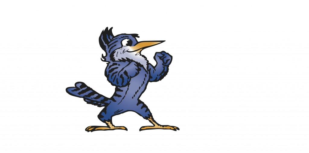 3.) Vector Blue Jay-jpeg